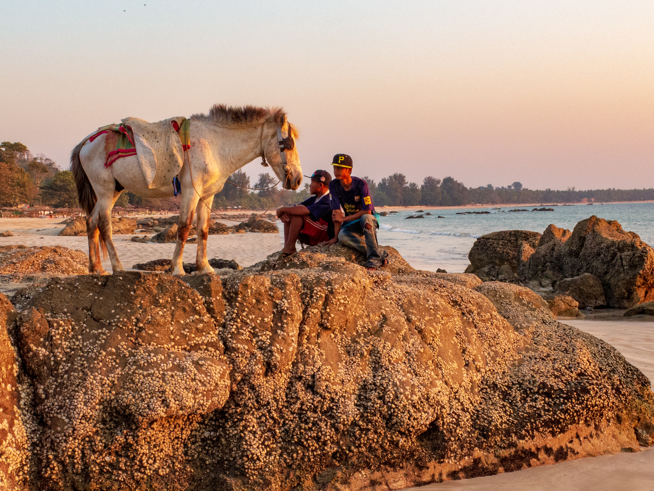 Photo: A Horse at Sunset on Ngapali Beach, Myanmar