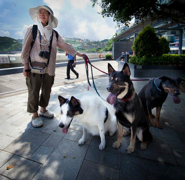 Dog-walker is Stanley, 2012