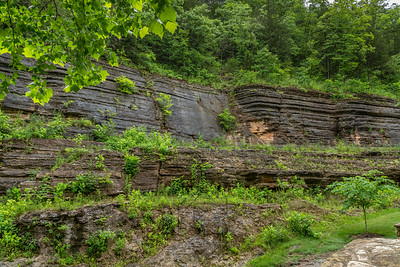 Canyon slate walls covered with trees