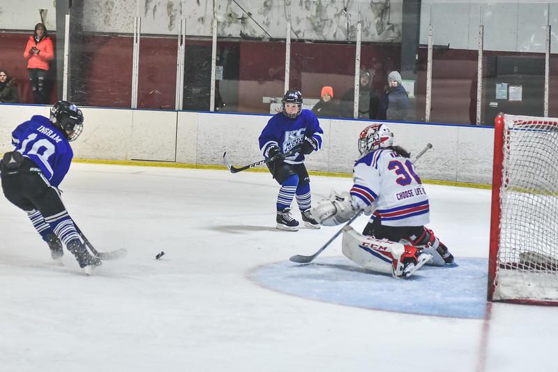 Leafs-69.jpg