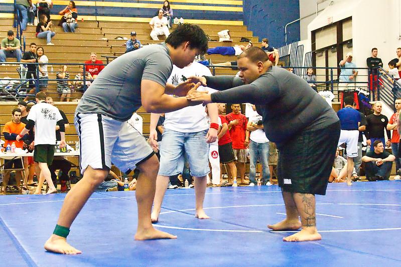MMA_Houston_20090418_0974.jpg