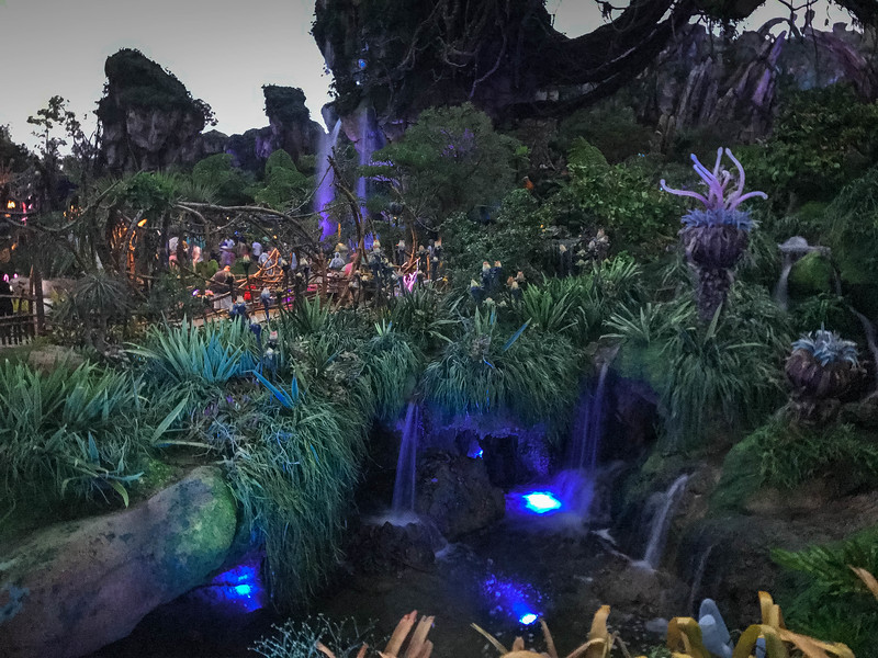 Disney World314.jpg