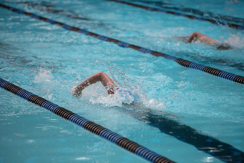 lcs_swimming_kevkramerphoto-1009.jpg