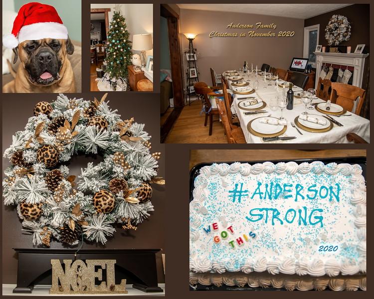 Anderson_Family_Xmas_In_Nov