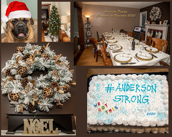 Anderson_Family_Xmas_In_Nov