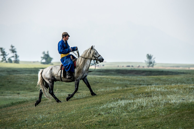Mongolsko (227 of 496).jpg