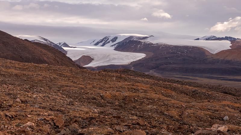 Twin Glaciers, Alexandra Fjord