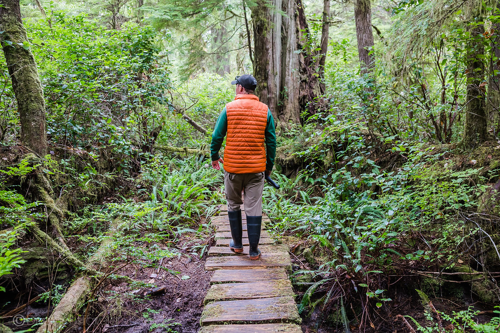 Kayaking Vancouver Island - Hiking on Meares Island - David Stock