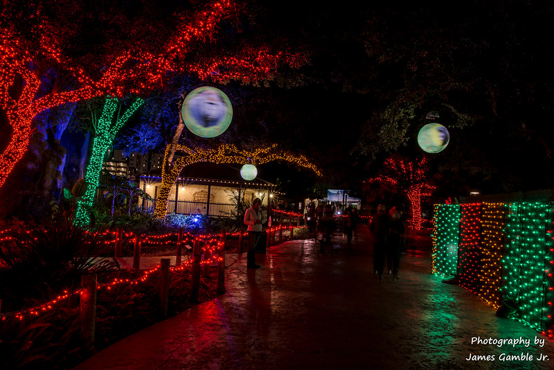 Houston-Zoo-Lights-3101.jpg