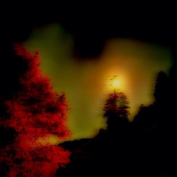 2011-10-16_1318773014.jpg