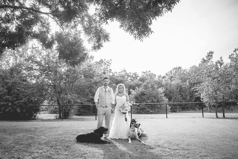 2014 09 14 Waddle Wedding-767.jpg