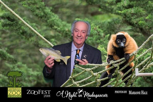 4-27-18 SF Zoo