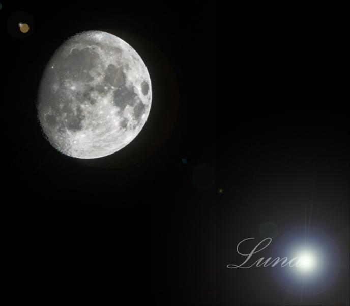 DSC_7454-Bearbeitet-Luna.jpg
