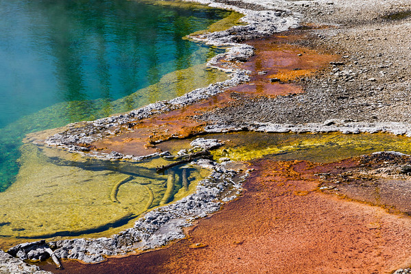Yellowstone Thermal Pools