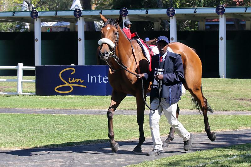 Sun Met_Bidvest Majorca Stakes-1379.jpg