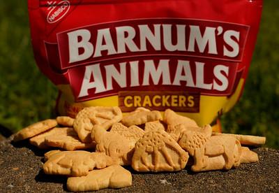 Apr 18 Nat'l Animal Cracker Day