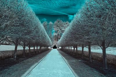 Infrared