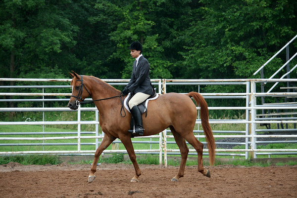 Class 21 English Novice Equitation