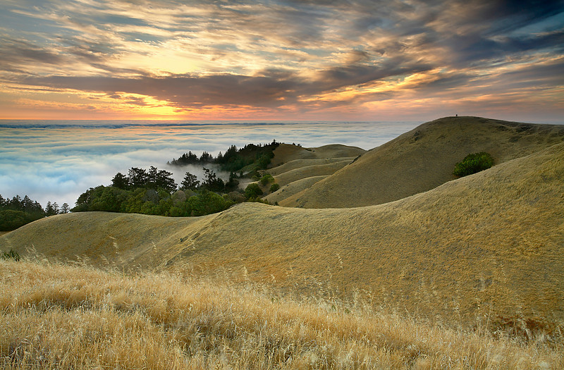 The sky during the summer is usually clear, so when I saw few high clouds drifting by in the weather satellite photo, I took the opportunity to go up to Mt. Tamalpais above the fog. So did a couple of other photographers on the hill to the right. They seemed so small compared to the grand scene before them, but they also became a perfect focal point for this scene. Even though they were far away, I could still hear them discussing where to stand and point the camera!  I could also hear the waves crashing more than 2,000 feet below in the fog.  You can see the two photographers in the 1280x1024 wallpaper file, and in the full sized tiff file, you can tell what they are wearing!