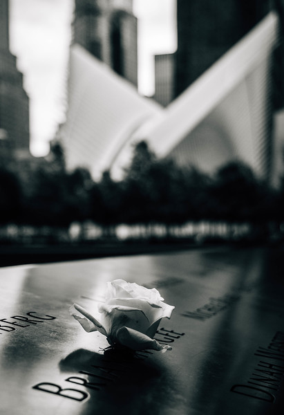 9-11 Memorial rose and occulus bnw.jpg