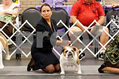 7/28/12 Longview Kennel Club AKC Dog Show by Sandi Cintron