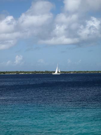 2011 Bonaire Webshots