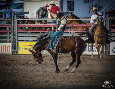 MT State Fair and Rodeo /  Kalispell MT