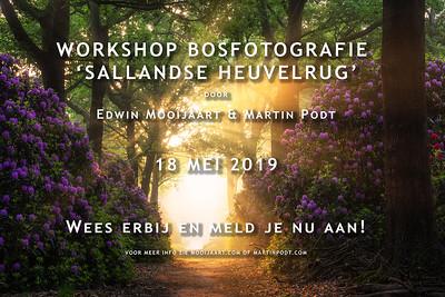2019-05-18 Workshop bosfotografie (Dutch)