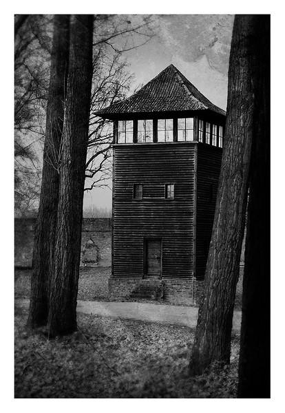 Poland016.jpg