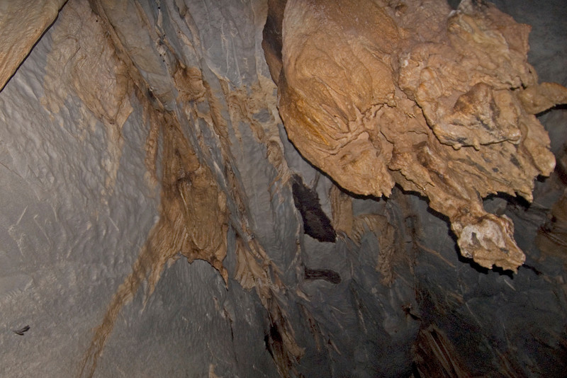 Stalactite Formation on Underground River ceiling - Palawan, Philippines