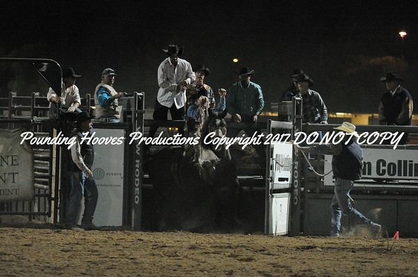10-31-13 Perf Saddle Bronc 40