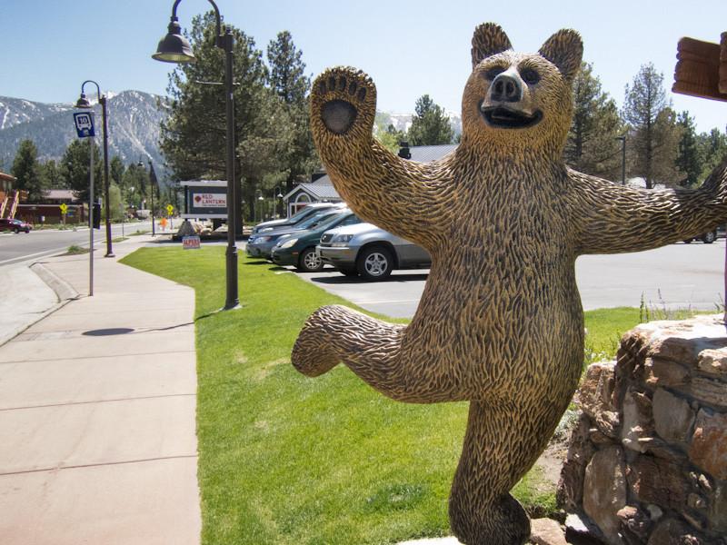 may 24 - bear.jpg