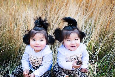 Wall Twins