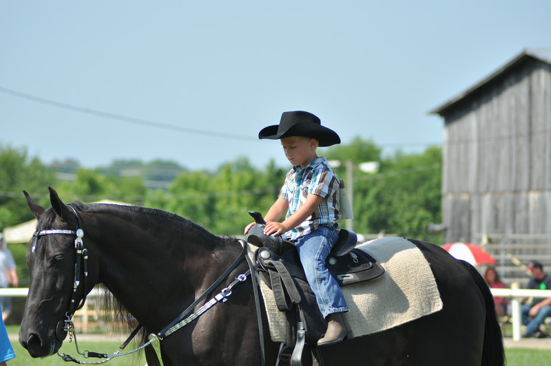 horseshow-sweetwater-0038.jpg