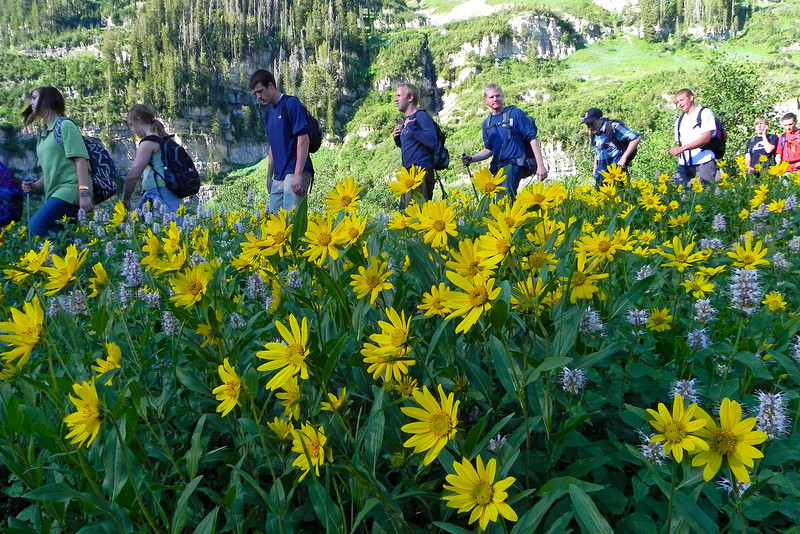2011/8/13 – We hiked Timpanogos by moon light last night with hundreds of others. I took this picture of the amazing wild flowers later in the morning on the way down. I shot the image with and without the hikers, but this was more representative of the entire hike. Normally I wouldn't want anyone in the picture, but the hike was very crowded. Something I've never experienced, especially in the middle of the night. This image captured the overall feeling of this years hike. Check out all the photo in this gallery – http://bit.ly/pwljDY