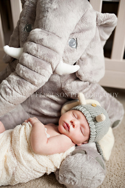 Hillary_Ferguson_Photography_Carlynn_Newborn029.jpg