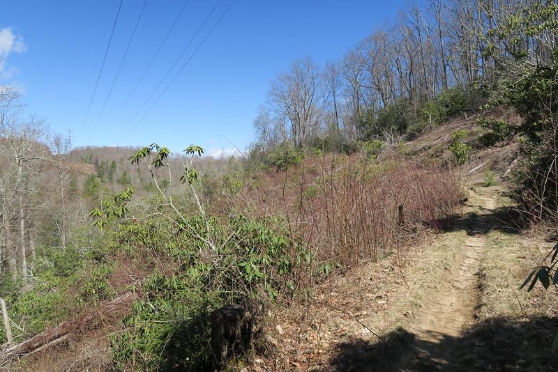 Devils Elbow Trail - 3,760'