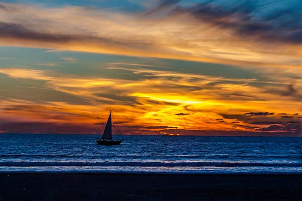 San Diego Sea World 2014