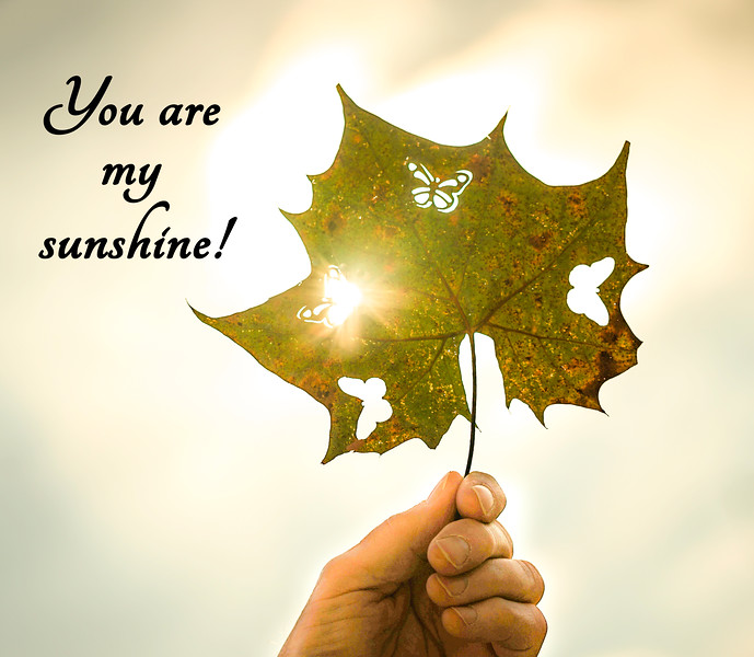 You are my sunshine""
