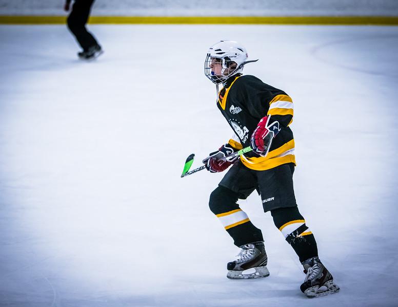 Bruins2-518.jpg