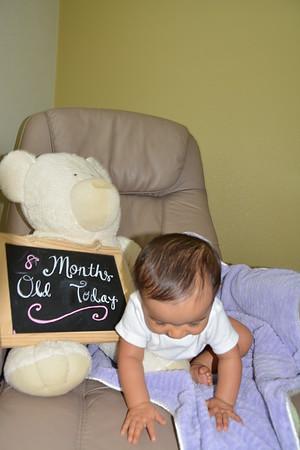 Sahana 12 month banner