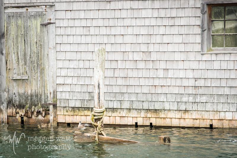 Fishtown, Joy, Whitefish-3852.jpg