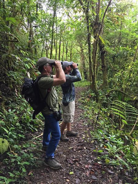 Quebradas Reserve, Costa Rica December 2019