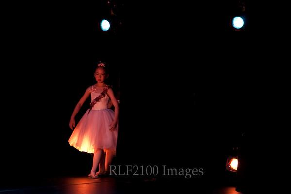 05 Rosebud Princess Fairies Set A: CD I & II