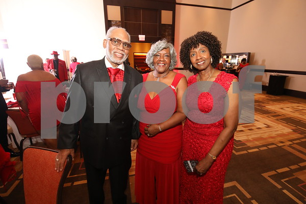DETROIT CONNECTION RED DRESS GALA 2017