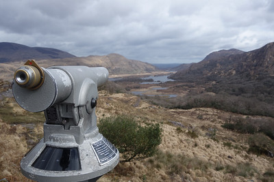 Killarney Park, Co. Kerry