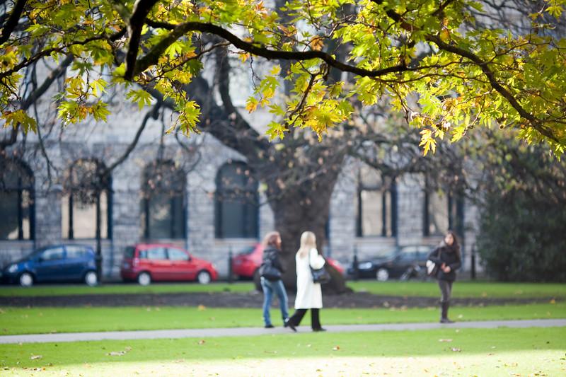 Autumn scene, New Square, Trinity College, Dublin, Ireland