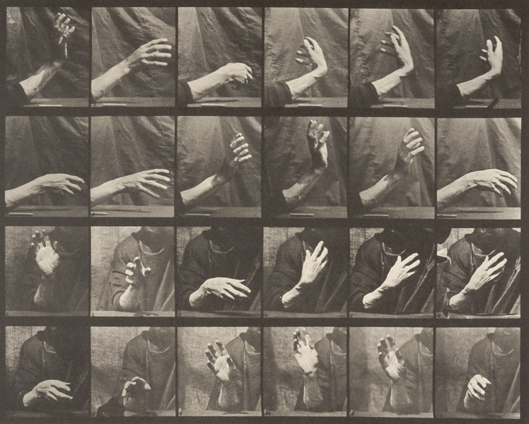 Hand beating time (Animal Locomotion, 1887, plate 535)