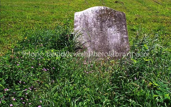 HUNGARY, Sopron. Jewish Cemetery. (2006)