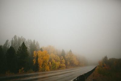 Fall '16